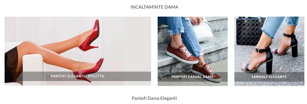 e pantofi